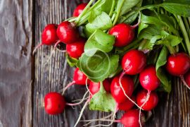 Conventional vs. Organic Farming